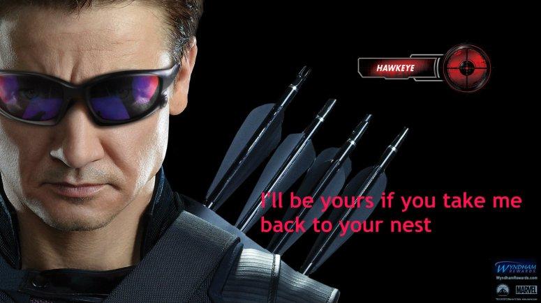 wyndham_avengers_Jeremy_Renner_Hawkeye
